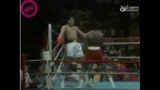 TROLLYWOOD: Muhammed Ali trolling during boxing