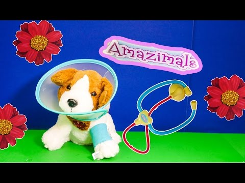 AMAZIMAL The Amazimals Get Better Puppy Vet Set TheEngineeringFamily Video Toy Review