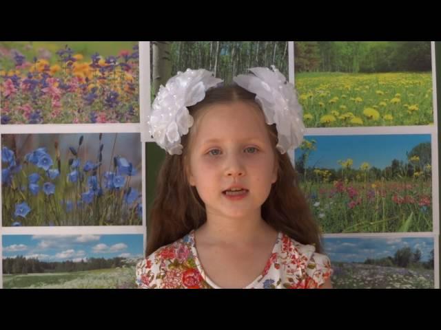 Изображение предпросмотра прочтения – АленаГаманова читает произведение «Цветики убогие северной весны» В.Я.Брюсова