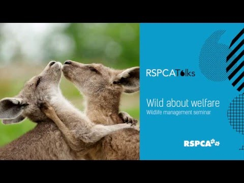 Dr Bidda Jones - Humane wildlife management: ideology or the real deal?