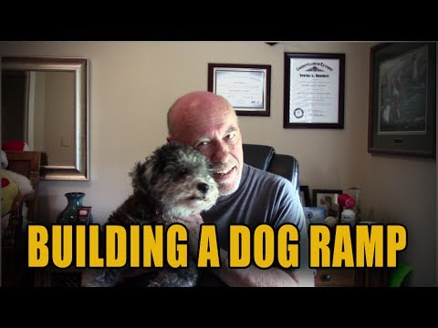 Dog Ramp For Truck >> HOW TO BUILD A DOG RAMP - YouTube