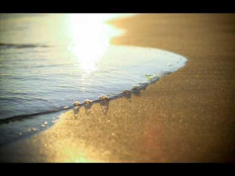 In Credo -- Siesta Del Sol