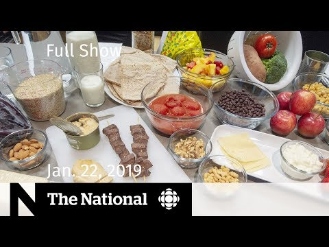 The National for January 22, 2019 — Dramatic Rescue, New Food Guide, Sleepless Nights Mp3