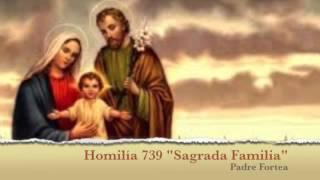 Sermón  739