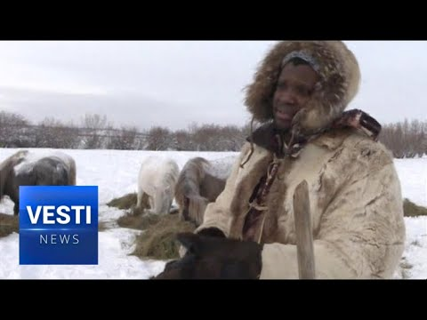 A Nigerian In Siberia: Local Oddity In Far East Is So Rare, Enthusiasts Made A Film About Him!