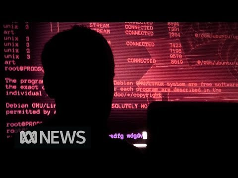 Australian businesses targeted by China in major hacking campaign  ABC News