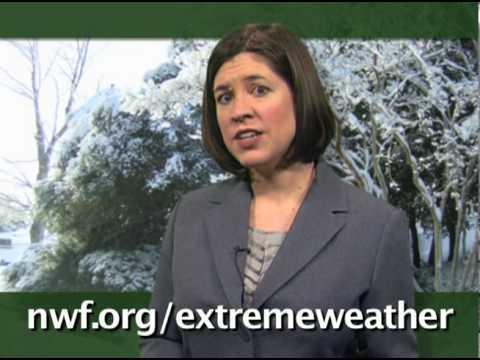 EXTREME WEATHER: Weird Winter