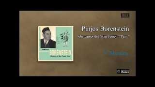 Pinjos Borenstein - V´Shomru