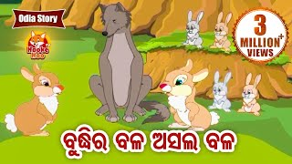 Buddhira Bala Asala Bala ବୁଦ୍ଧିର ବଳ ଅସଲ ବଳ Odia Moral Story For Kids | HookeHoo Tv