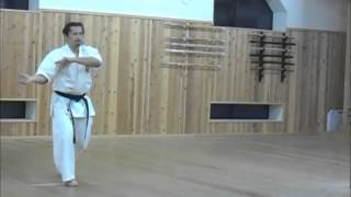 20150105 Taikiken Tanshu Demonstration at Fukushinkan Dojo of Kendo Shobu-kan Tochigi, Japan