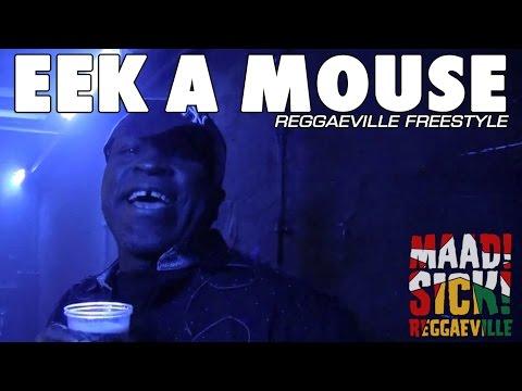 Eek A Mouse - Reggaeville Freestyle [2010]