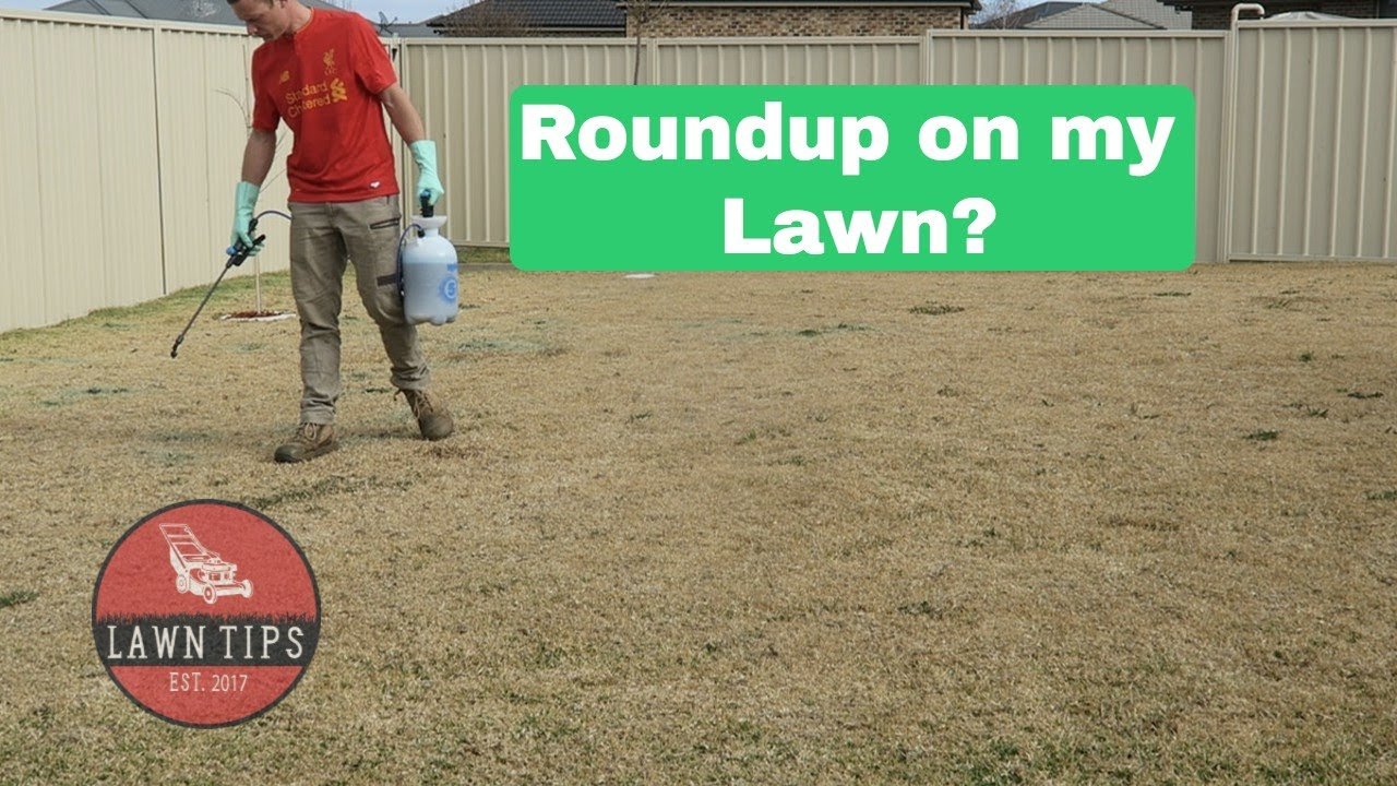 Roundup On My Lawn Spot Spraying