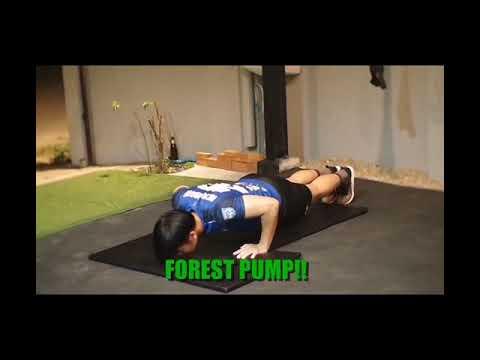Forest Pump