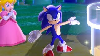 Sonic In Super Mario 3d World