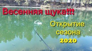 Рыбалка Щука Сезон 2020 Весенняя рыбалка на спиннинг