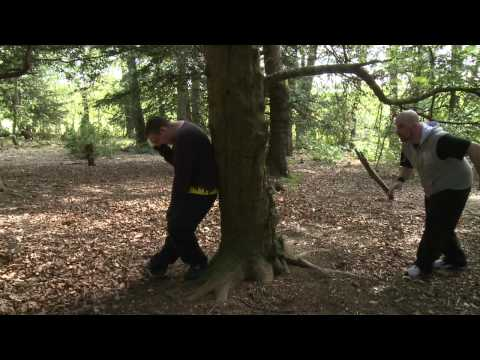 Shin Splinters 3 : The Forest in the Woods