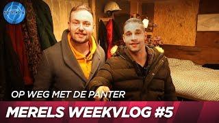 Joaquin en Gerrit nemen het over | Op weg met de panter #5 | UTOPIA (NL) 2019
