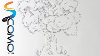 Dibujar un árbol - How to Draw a Tree