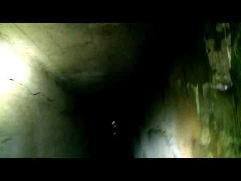 Tweed tunnels, blauvelt state park