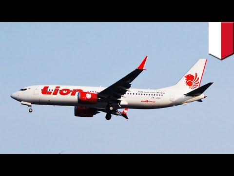 No survivors found in Indonesia plane crash - TomoNews