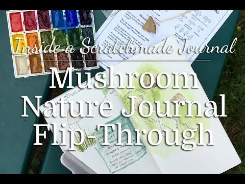 Mushroom Nature Journal Flip-Through