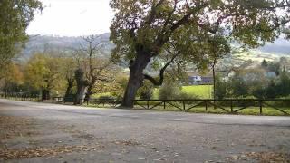 PARROQUIA DE DEVA (GIJON)