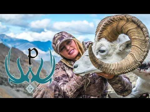 Dall Sheep Hunting With Kristy Titus