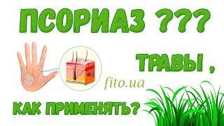Травы от псориаза - какие? применение, приготовление, фитотерапия