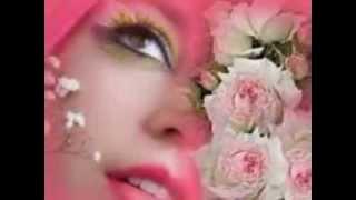Bunga  Mawar  ----- The Mercy