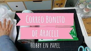 Correo bonito de Araceli | Pocket letter de Navidad!