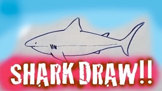 DRAW A SHARK!! EASY DRAW!
