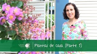 Plantas de casa (parte 1) / Home