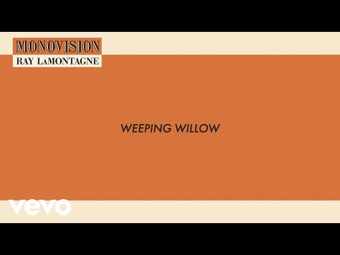 Ray LaMontagne - Weeping Willow (Lyric Video)