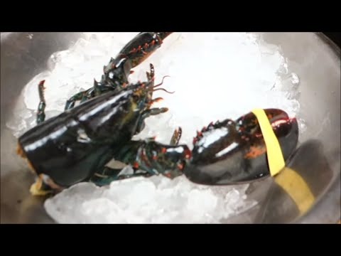 GRAPHIC: Live Maine Lobster For Sushi Roll Part 2 - How To Make Sushi Series