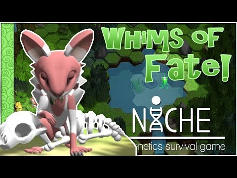The Rose & The Great Migration!! 🍀 Niche: Whims of Fate Challenge - Episode #34