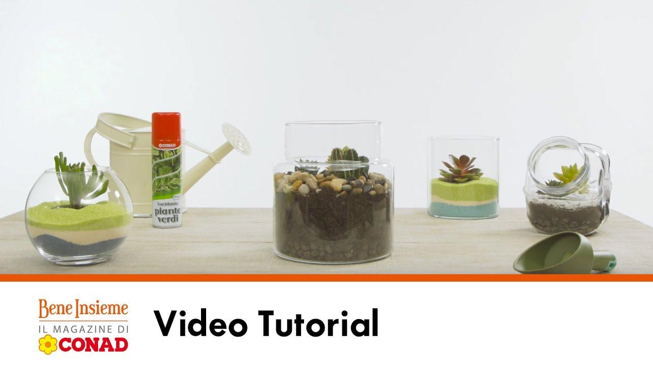 Terrario Per Piante Grasse 2 terrarium per piante grasse | tutorial conad bene insieme