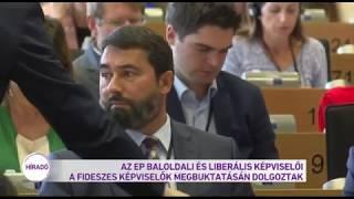 Az EP baloldali és liberális képviselői a Fideszes képviselők megbuktatásán dolgoznak