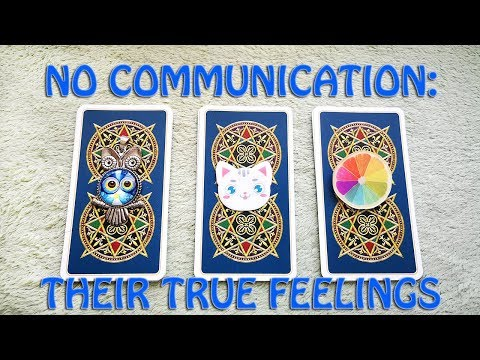 NO COMMUNICATION: THEIR TRUE FEELINGS AND INTENTIONS. PICK A CARD