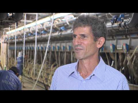 Phim giới thiệu qui trình sản xuất sữa tươi sạch TH true MILK