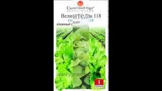 Семена листового салата оптом
