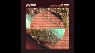 DJ Pierre - What Is House Muzik (Ricardo Villalobos What Is Remix)