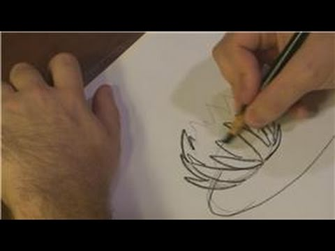 Drawing Plants  Flowers  How to Draw a Lily Pad Flower  YouTube