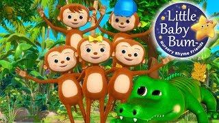 Five Little Monkeys Swinging In The Tree | Nursery Rhymes | Original Version By LittleBabyBum