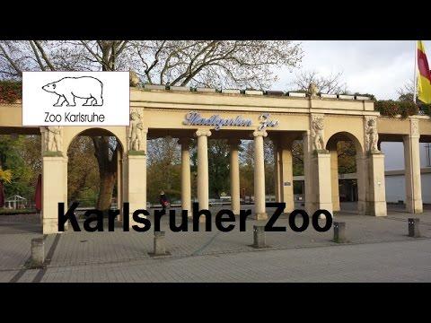 skullluigii unterwegs karlsruher zoo fma youtube. Black Bedroom Furniture Sets. Home Design Ideas