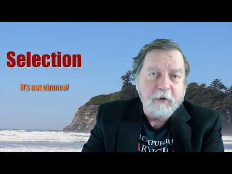 Selection: it isn't chance