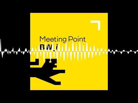 Download #14 Wie Baden-Württembergs Innovationskraft noch stärker zum Strahlen kommt - Meeting Point BW_i