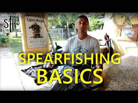The MINIMUM gear needed to start spearfishing--- HOW-TO