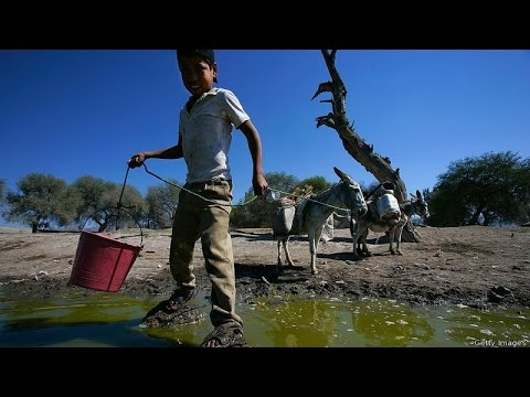 2 billion people in the world drink contaminated water: WHO