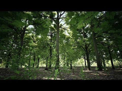 Oak Forest - Unreal Engine 4 - Demo (4K)