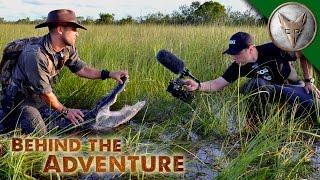 Making Wildlife Videos Ain